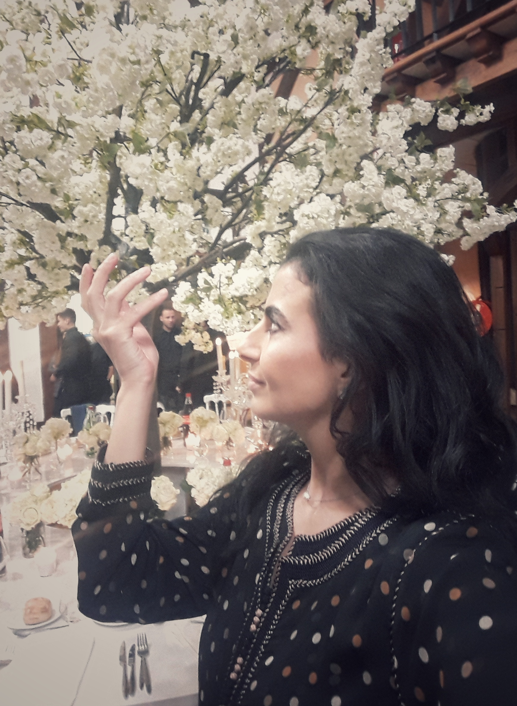 Effleurer ces feuilles de cerisiers japonais ... quelle beauté